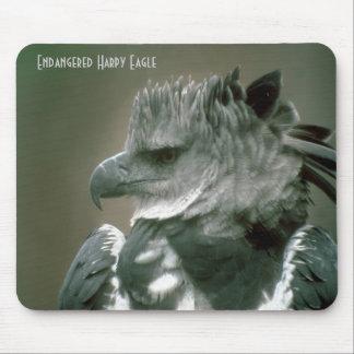 Endangered Harpy Eagle Mouse Pad