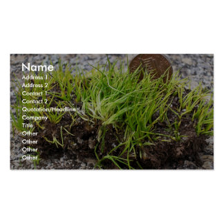 Endangered mat-forming quillwort (Isoetes tegetifo Business Card Templates