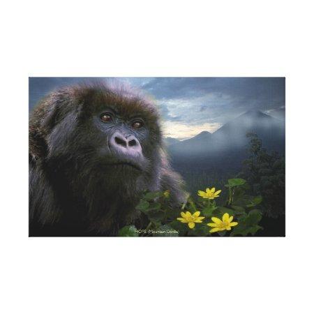 "Endangered Mountain Gorilla named ""HOPE"" Art Gallery Wrap Canvas"