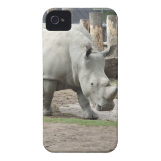 Endangered Northern White Rhinos iPhone 4 Covers