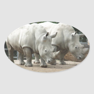 Endangered Northern White Rhinos Oval Sticker