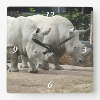 Endangered Northern White Rhinos Square Wall Clock