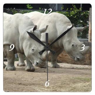Endangered Northern White Rhinos Square Wall Clock