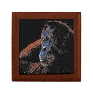 Endangered Orangutan Primate Portrait Gift Box