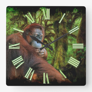 Endangered Orangutan & Rainforest Primate Image Square Wall Clock