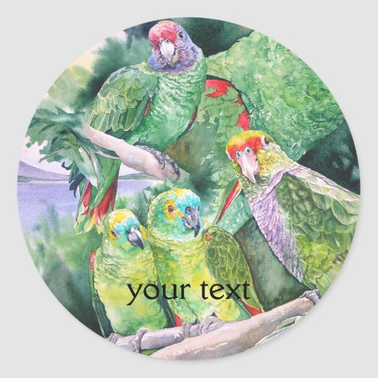 Endangered Parrots of Brazil's Atlantic Rainforest Classic Round Sticker
