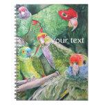 Endangered Parrots of Brazil's Atlantic Rainforest Notebooks