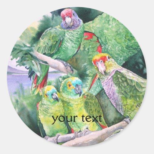 Endangered Parrots of Brazil's Atlantic Rainforest Round Sticker