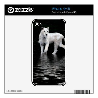 Endangered Rare White Lion Wildlife-lover iPhone 4 Skins