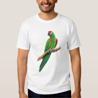 Endangered Red Fronted Macaw Parrot T-Shirt