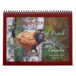 """ENDANGERED Species of Brazil"" 2013 Calendar"