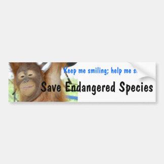 Endangered Species Smiling Orangutan Bumper Sticker