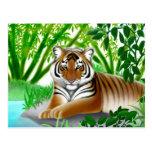 Endangered Sumatran Tiger Postcard