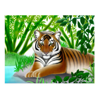 Endangered Sumatran Tiger Postcard
