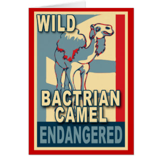 Endangered Wild Bactrian Camel Pop Art Tshirts Card