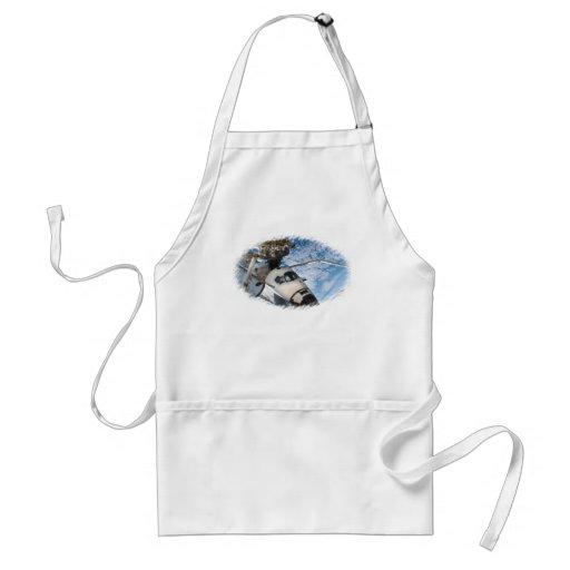 Endevour space shuttle apron