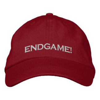 """ENDGAME!"", PC GAME PLAYER CAP"