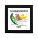 Endomembrane System Inside (Cell Biology) Trinket Box