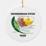 Endomembrane System Inside (Cell Biology) Ornaments