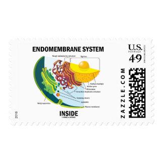 Endomembrane System Inside (Cell Biology) Postage