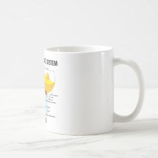 Endomembrane System Inside Classic White Coffee Mug