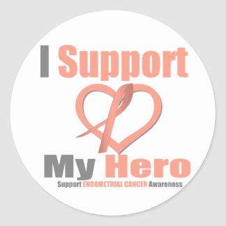 Endometrial Cancer I Support My Hero Stickers