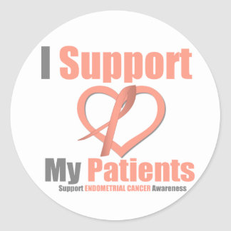 Endometrial Cancer I Support My Patients Stickers