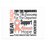 Endometrial Cancer I Wear Peach Ribbon TRIBUTE Post Cards