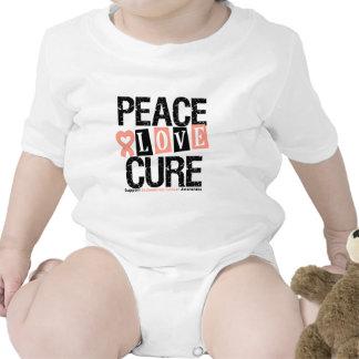 Endometrial Cancer Peace Love Cure Tshirts