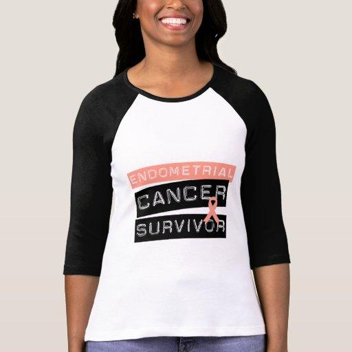 Endometrial Cancer Survivor T-shirt