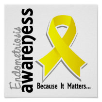 Endometriosis Awareness 5 Poster