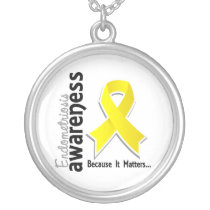 Endometriosis Awareness 5 Silver Plated Necklace