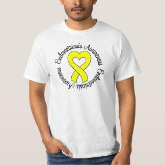 Endometriosis Awareness Tee Shirt