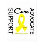 Endometriosis Support Advocate Cure Postcard
