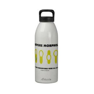 Endospore Morphology Who Said Endospores Were All Reusable Water Bottles