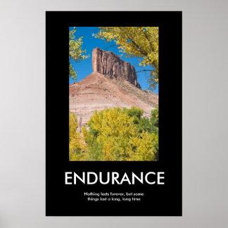 ENDURANCE PRINT