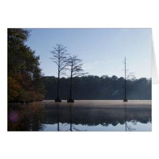 Enebro del lago, parque de estado de Cheraw Tarjeta De Felicitación