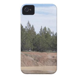 Enebros iPhone 4 Case-Mate Cárcasa