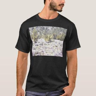 Enebros y roca de la lava en acuarela playera