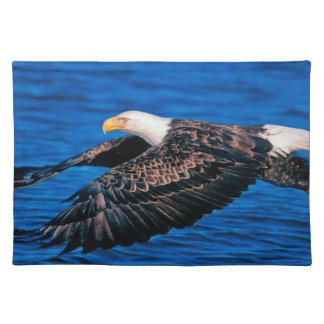 Energetic Vital Knowing Understanding Cloth Placemat