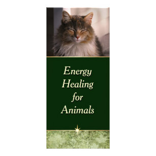 Energy Healing for Animals Rack Card
