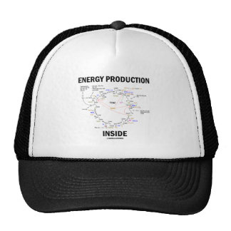 Energy Production Inside (Krebs Cycle TCAC) Hat