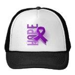 Enfermedad de Alzheimer de la esperanza 2 Gorros Bordados