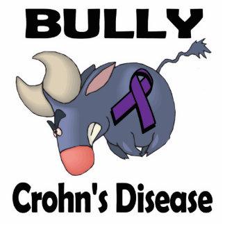 Enfermedad de Crohns del matón (púrpura) Escultura Fotografica