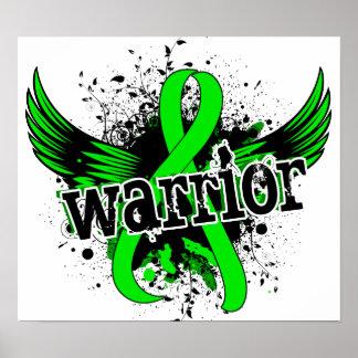 Enfermedad de Lyme del guerrero 16 Posters