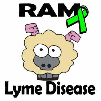 Enfermedad de RAM Lyme Escultura Fotografica
