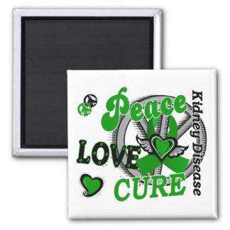 Enfermedad de riñón de la curación 2 del amor de l iman para frigorífico