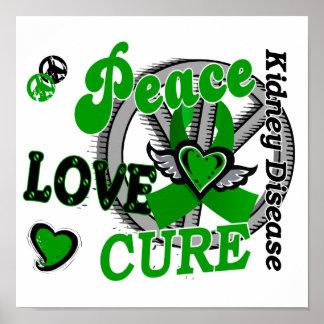 Enfermedad de riñón de la curación 2 del amor de l poster