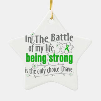 Enfermedad de riñón en la batalla adorno navideño de cerámica en forma de estrella