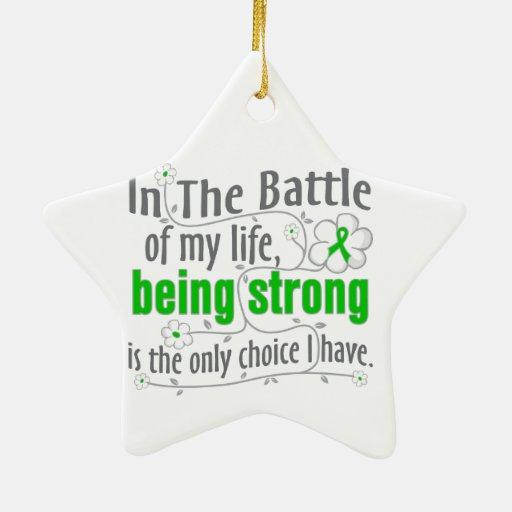 Enfermedad de riñón en la batalla ornamento de navidad